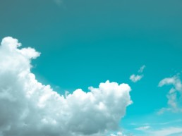 Adeel Javed - What To Look For In A Cloud BPM Platform